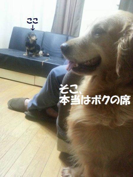 Lucky縲€ku-4