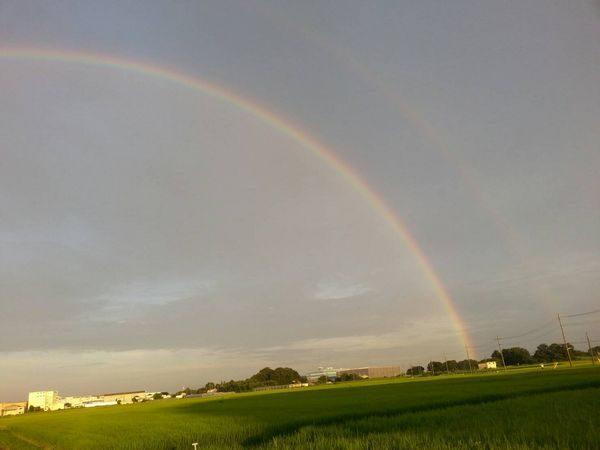 ブログ用・虹2