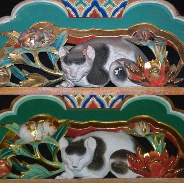 眠り猫(Befoer After)