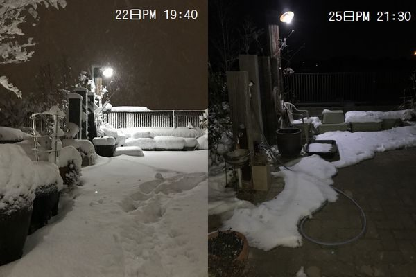 2018年雪