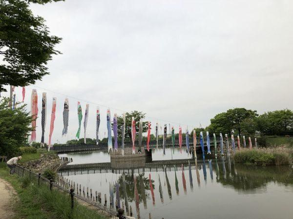 2018・柴山沼鯉のぼり