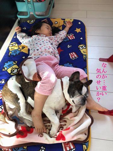 望愛ちゃんとナルの昼寝