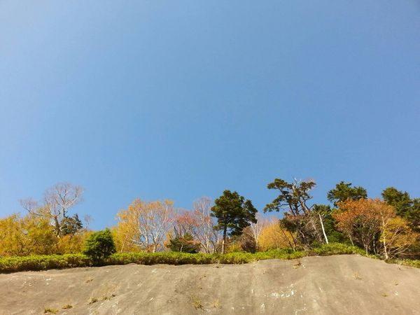 2018錦秋②吸い込まれそうな空
