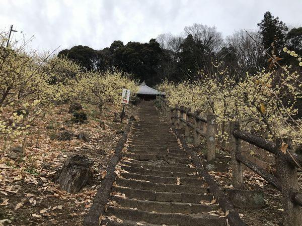 栃木市清水寺①