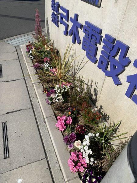 2020・2・5営業所花壇1