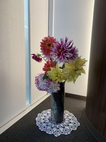 2020・11月の花②