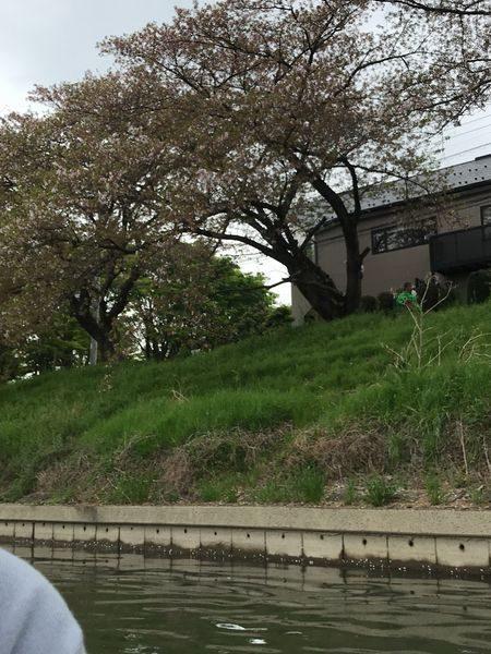 2021観桜会⑫